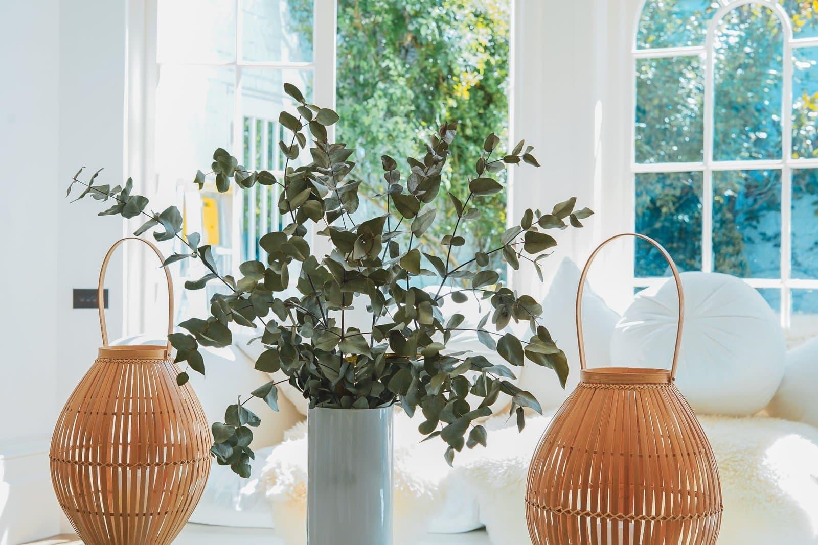 Möbler & inredning för kontorslokaler & privata bostäder